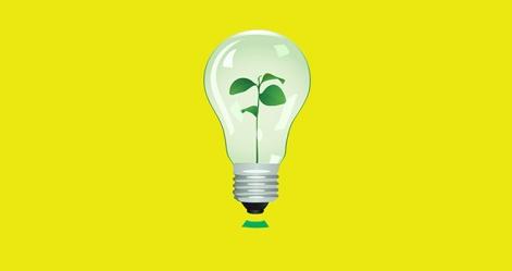 Plant in lamp. Vector illustration