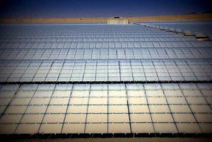 Solar-Park-Dubai